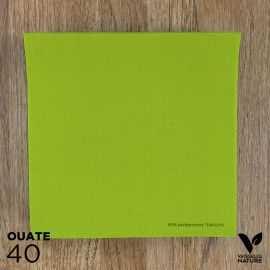 40 Serviettes Anis 40 x 40cm biodégradables - compostables