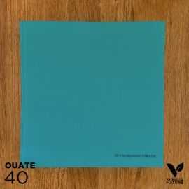 40 Serviettes bleues 40 x 40cm Biodégradables - compostables