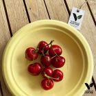 12 Assiettes 100 % fibres bio jaune pastel 18 cm