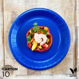 10 Assiettes biodégradables carton bleu marine 22 cm