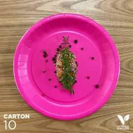 10 Assiettes biodégradables carton fuchsia 22 cm