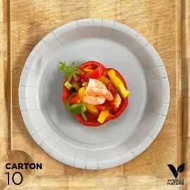 10 Assiettes biodégradables carton gris 22 cm