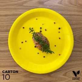 10 Assiettes biodégradables carton jaune 22 cm