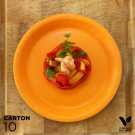 10 Assiettes biodégradables carton orange 22 cm