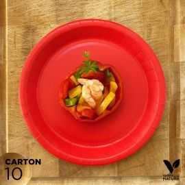 10 Assiettes biodégradables carton rouges 22 cm