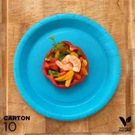 10 Assiettes biodégradables carton turquoise 22 cm