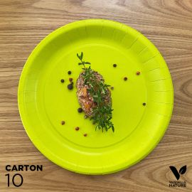 10 Assiettes biodégradables carton vert anis 22 cm