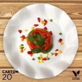 20 Assiettes blanches 27cm 100% bio et compostables