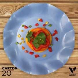 20 Assiettes bleues 27cm 100% bio et compostables