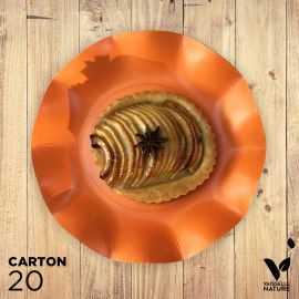 20 Assiettes orange 21cm 100% Bio et compostables