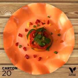 20 Assiettes orange 27cm 100% bio et compostables