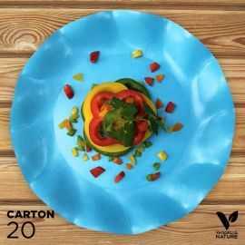 20 Assiettes turquoise 27cm 100% bio et compostables
